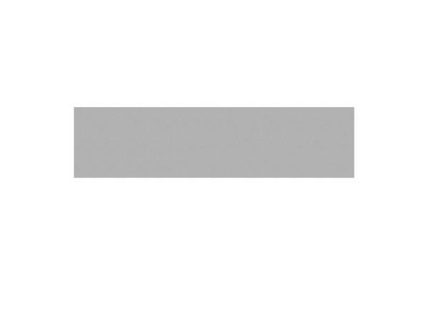 Tr. Board XL Einzelprofil titangrau 178 x 44,9 cm  Nr. 2807